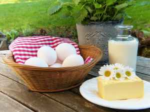 low carb dietary sources of calcium - cheese eggs milk